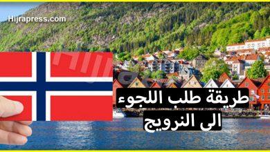Photo of طريقة طلب اللجوء الى النرويج من الألف الى الياء