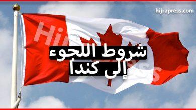 Photo of شروط اللجوء إلى كندا التي يجب أن تتوفر فيك كطالب لجوء عربي