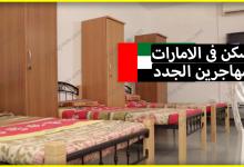 Photo of إليك كل المعلومات الخاصة ب السكن في الامارات للمهاجرين الجدد