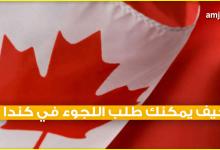 Photo of طلب اللجوء الى كندا للسعوديين .. شرح مفصل ومبسط ليفهمه ويستفيد منه الجميع