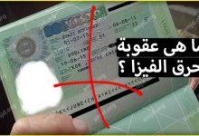 Photo of ما الذي سيحصل للمسافر إذا لم يعد الى بلده بعد انتهاء مدة صلاحية فيزا الشنغن ؟