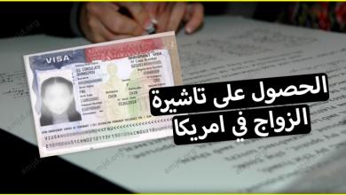صورة معاملة الزواج في امريكا .. كيف يمكن للمواطن العربي الحصول على تاشيرة الزواج؟