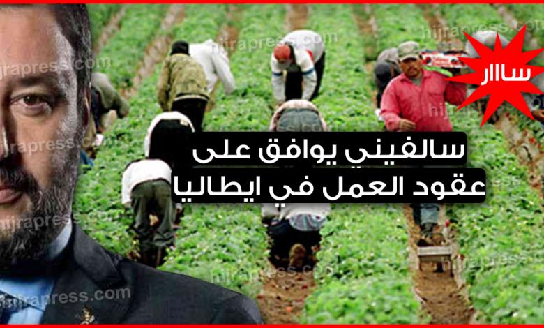 عقود عمل موسمية في ايطاليا 2020_2021 - سالفيني يوافق على decreto flussiلجلب العمال الأجانب