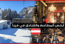 Photo of أرخص المطاعم والفنادق في فينا