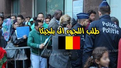 صورة اللجوء في بلجيكا 2020_2021 .. كل ما تريد معرفته عن هذا الموضوع بأدق التفاصيل